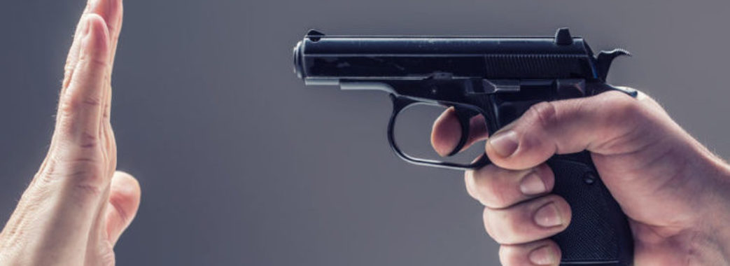 Зеленський не підтримав петицію про легалізацію зброї