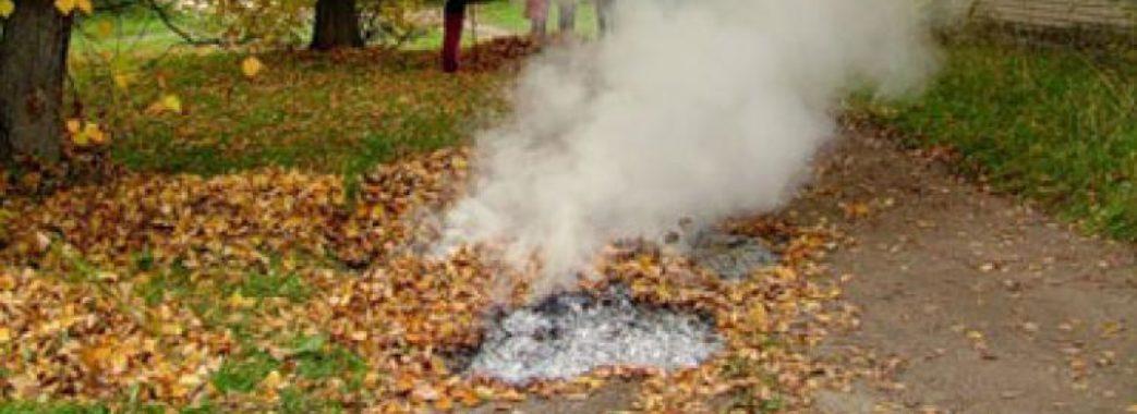 Через дим від спаленого листя можна захворіти на рак