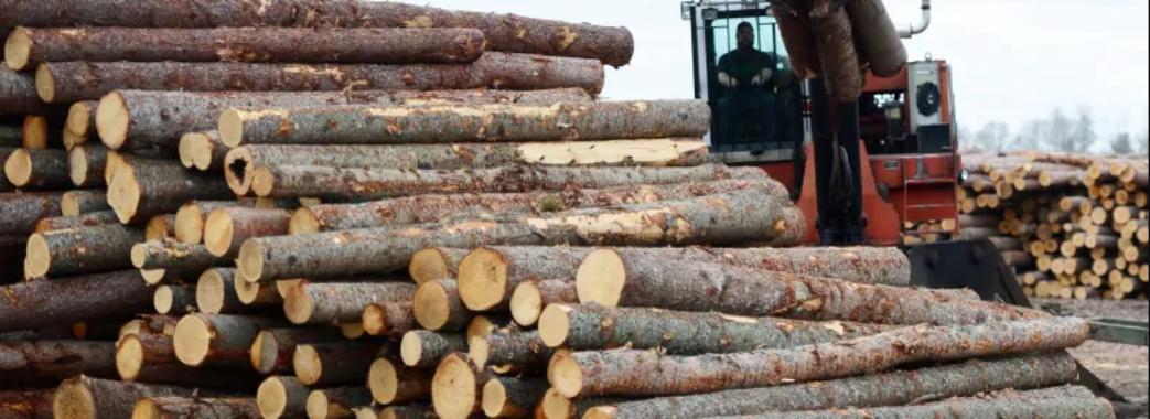 На Старосамбірщині водій навантажувача наїхав на клієнтку лісопильні