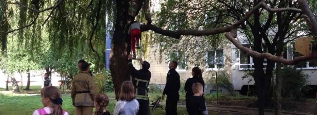 Чотири рятувальники знімали 9-річного львів'янина з дерева