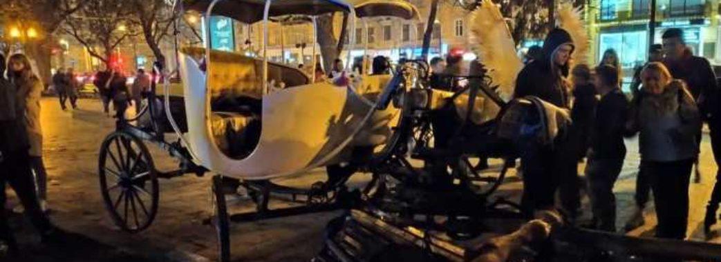 «Коней не буде»: у Львові заборонили прогулянки на каретах