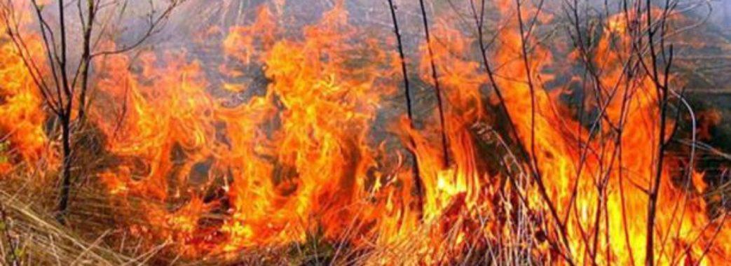 Львів'яни вимагають заборонити спалювання сухостою