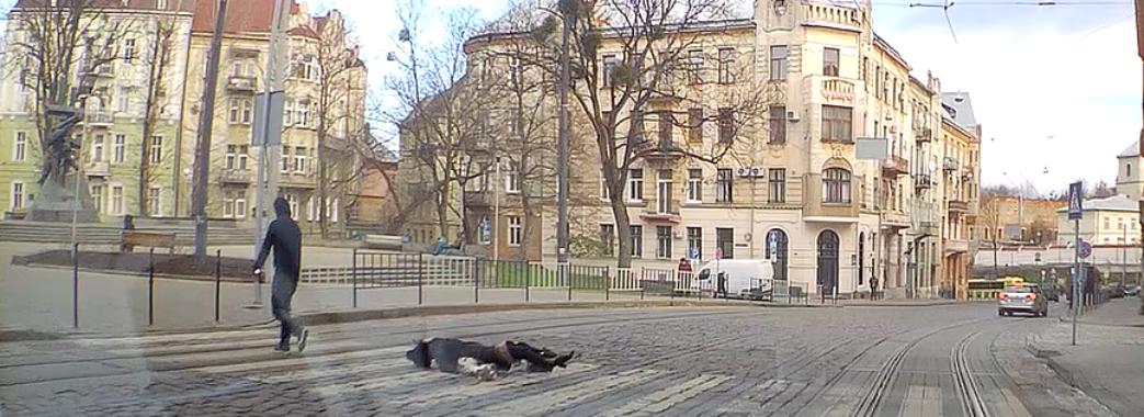 Молодика, який вдарив жінку у центрі Львова, затримали