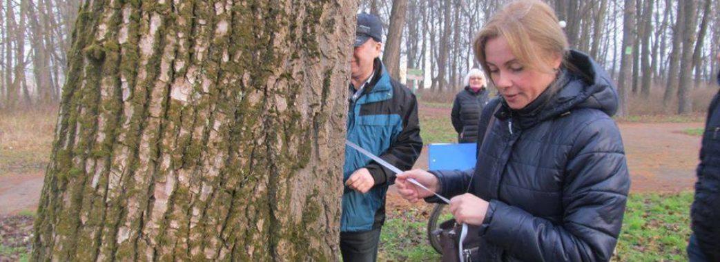 Міські парки мають стати візитівкою Миколаєва