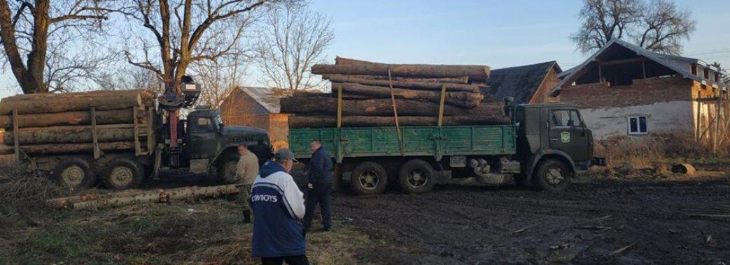 На Старосамбірщині поліція викрила ще одну пилораму з незаконною деревиною