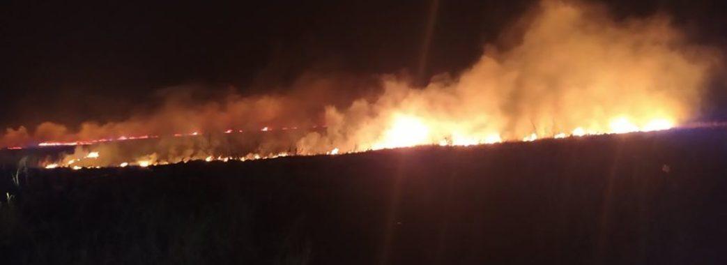 Горіла ледь не вся Львівщина: за минулу добу рятувальники погасили 11 пожеж сухої трави