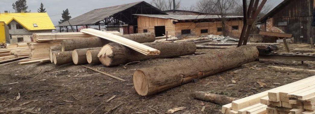 На Самбірщині та Старосамбірщині вкотре вилучили незаконно зрубані дерева