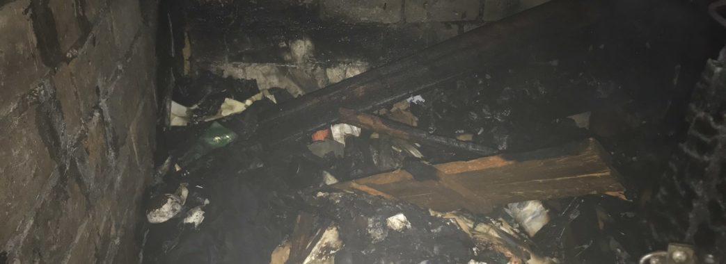 Львівські рятувальники винесли з пожежі трьох безхатьків