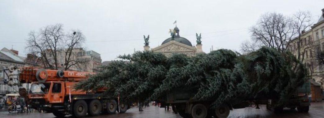 Завтра у Львові демонтують головну ялинку