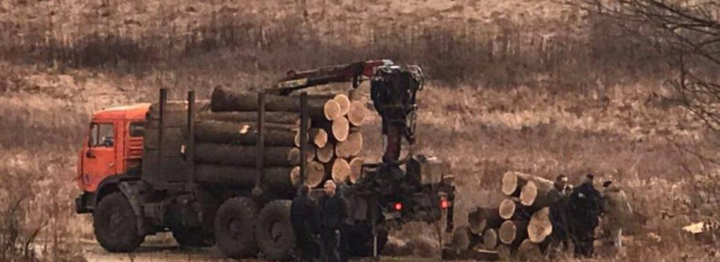 На Городоччині селяни зі священником затримали лісовоз із дубом без чипів