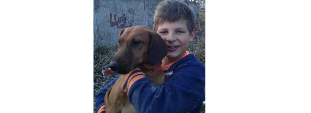 """""""Було складно дихати"""": у Пустомитах восьмикласник витягнув пса із каналізації"""