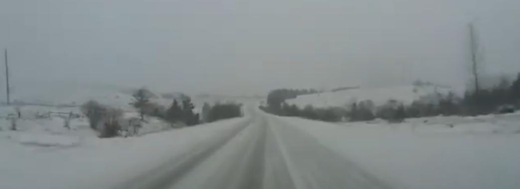 Частину Львівщини засипало снігом (Відео)