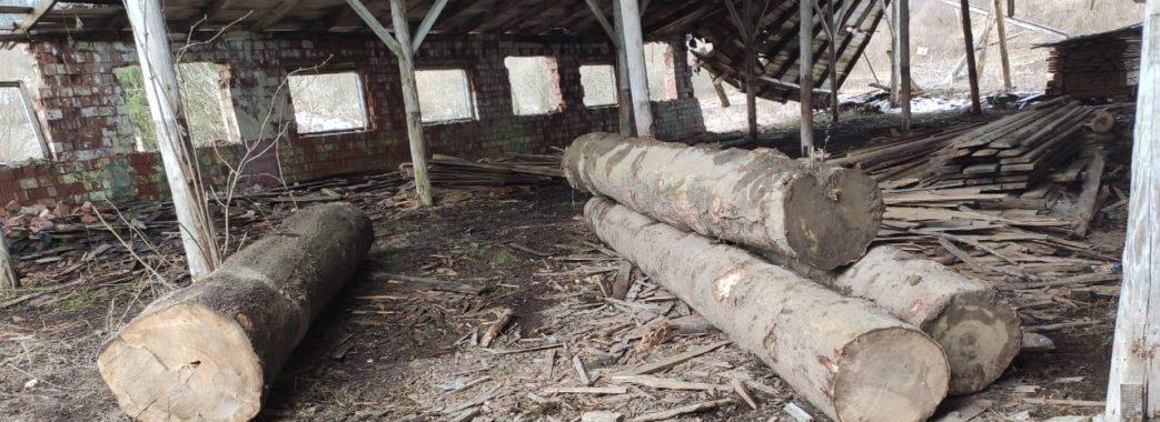 «Це вже нова схема лісових крадіжок»: на Старосамбірщині біля приватної пилорами виявили незаконно зрубані дерева