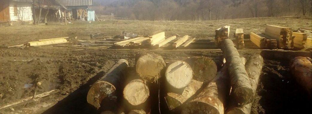 На Старосамбірщині поліція знову виявила незаконно зрубану деревину