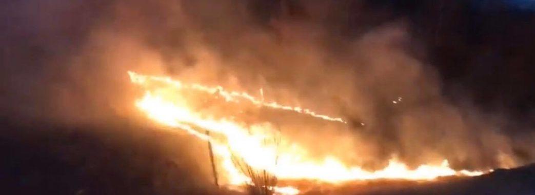 На Старосамбірщині горить земля з червонокнижними підсніжниками (ВІДЕО)