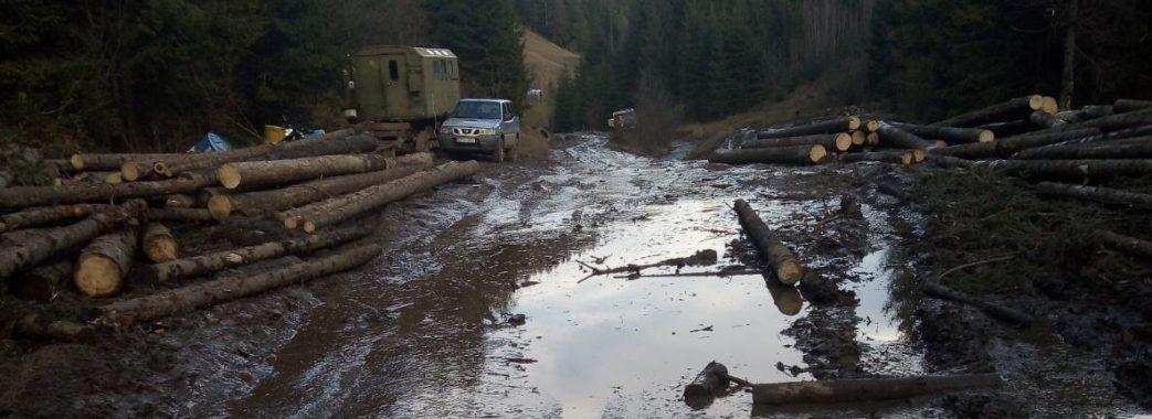 «Нема на них ніякої управи»: лісники Славської ОТГ вирубують дерева, знищуючи дороги і річки (ВІДЕО)