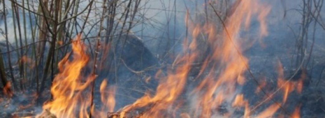Перечепилася за гілку і впала у палаючу траву: на Сокальщині згоріла пенсіонерка