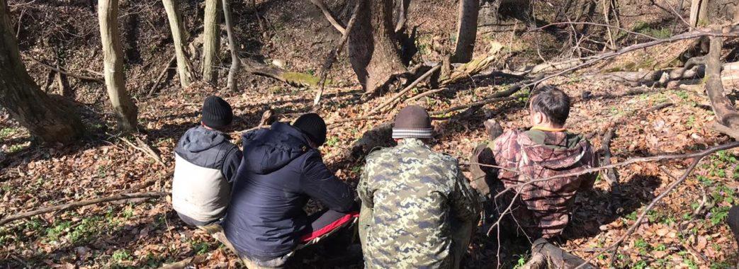 На Старосамбірщині браконьєри вбили благородного оленя