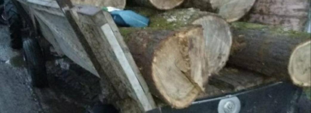 Колесо вистрілило: на Сокальщині чоловік загинув під возом, повним деревини