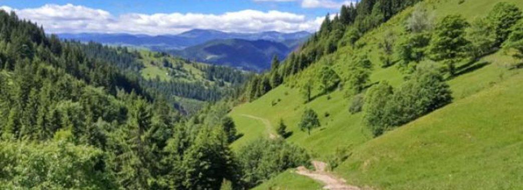 З 1 червня на Львівщині планують розпочати туристичний сезон