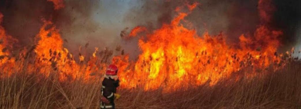 Верховна Рада суттєво збільшила штрафи для паліїв сухої трави