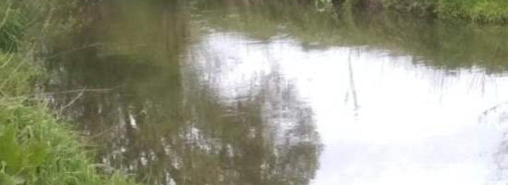 «Один чобіт на березі, а інший – весь у болоті»: на Яворівщині в річці знайшли мертву жінку