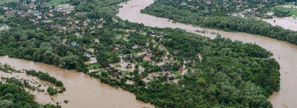 Прокуратура розслідуватиме зв'язок між вирубкою лісів та повенями на Прикарпатті