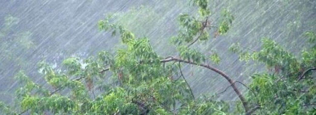 Майже на всій території Україні оголосили штормове попередження