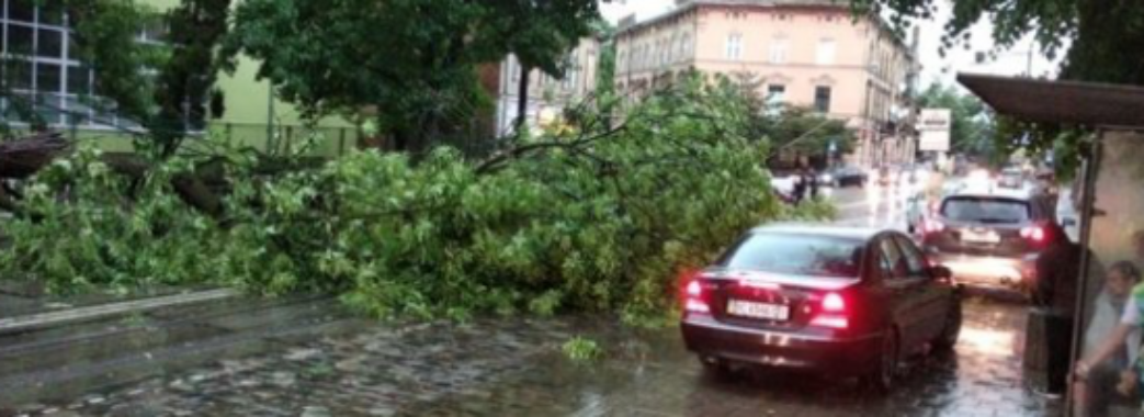 За дві години випало 25% місячної норми опадів: наслідки буревію на Львівщині
