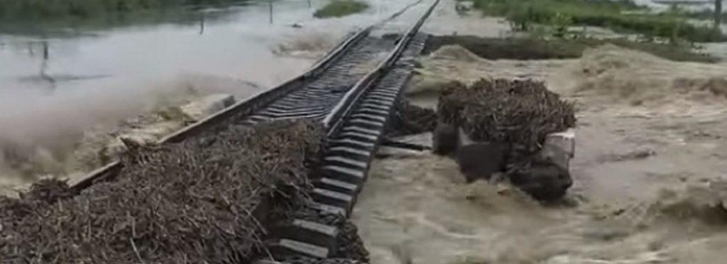 Держлісагентство стверджує, що вирубка лісу у Карпатах не є причиною повені