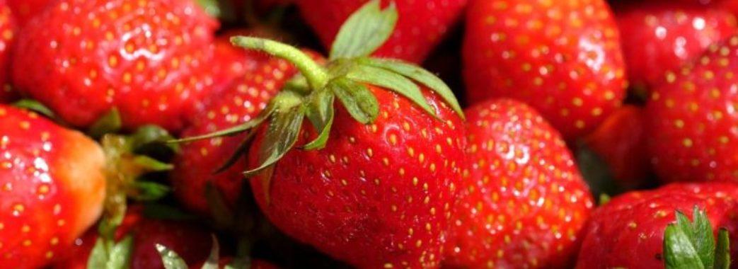«Дешевої полуниці цього року не буде»: через несприятливу погоду в Україні рекордно дорогі ягоди