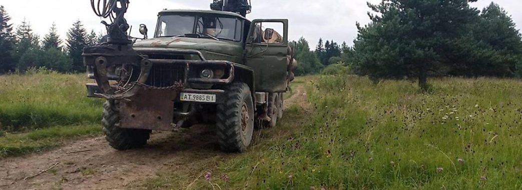 Доведені до відчаю жінки зупинили лісовоз на Старосамбірщині (ВІДЕО)