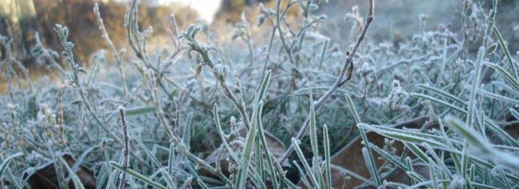 На Львівщині прогнозують заморозки