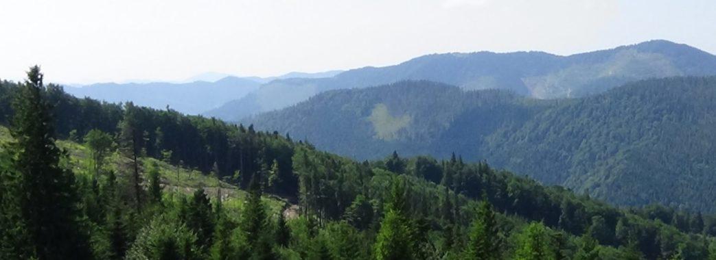 """Уряд схвалив створення природного парку """"Королівські Бескиди"""" на Старосамбірщині"""