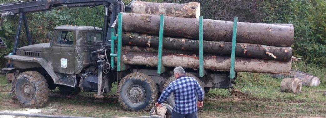 На Старосамбірщині затримали експрацівника лісу, який незаконно вивозив деревину