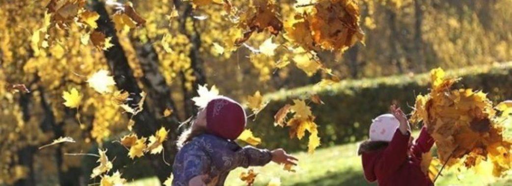 На Львівщині канікули для школярів розпочнуться з 19 жовтня