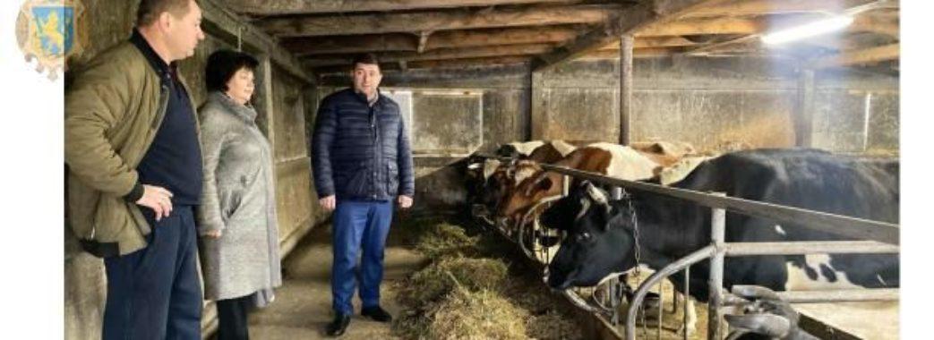 «Завжди мріяв займатися власною справою на рідній землі»: фермер зі Жовківщини розповів, як стати успішним