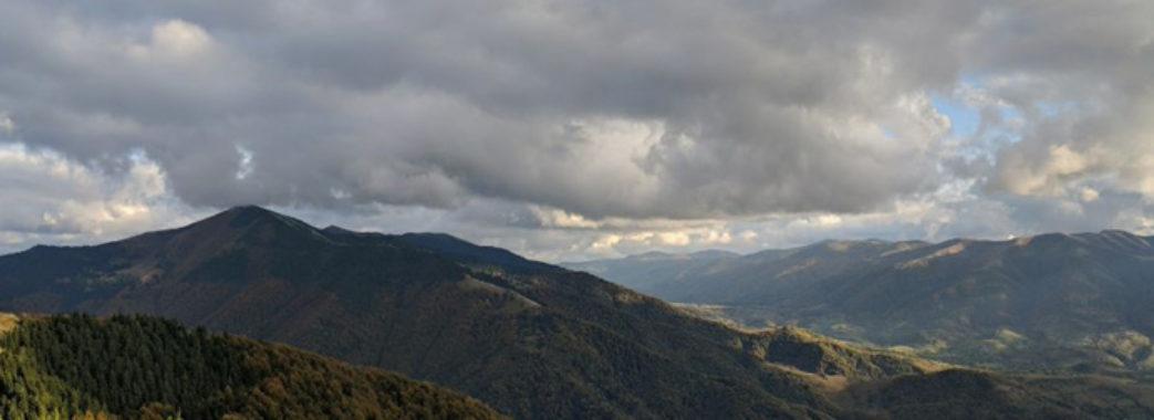 Через незаконні рубки і зміни клімату Карпатський регіон у реальній небезпеці, – заявляють в ООН