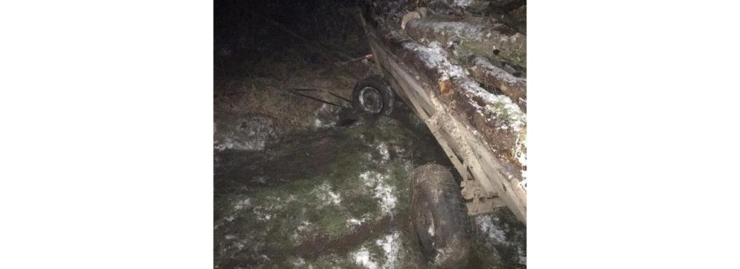 «Впав з підводи, коли віз дрова»: на Пустомитівщині трагічно загинув чоловік