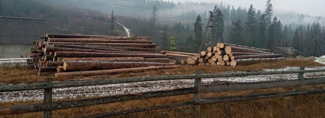 «То наше здоров'я та наші легені»: на Сколівщині люди виступили проти вирубки лісу (Відео)