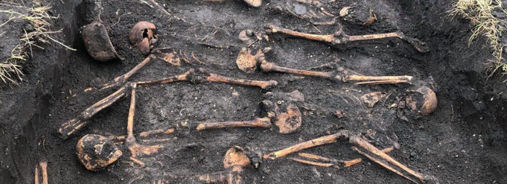 Натрапив на людський череп: у Золочівському районі розкопали рештки п'яти бійців (Відео)