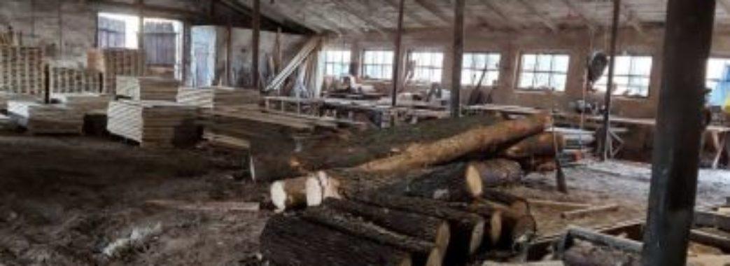 Підлеглі депутата «Слуги народу» завдали збитків державі на 2.6 мільйона гривень(ФОТО)
