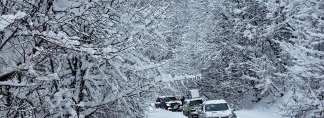 Снігові замети, ожеледиця та мокрий сніг: на Львівщині прогнозують погіршення погоди