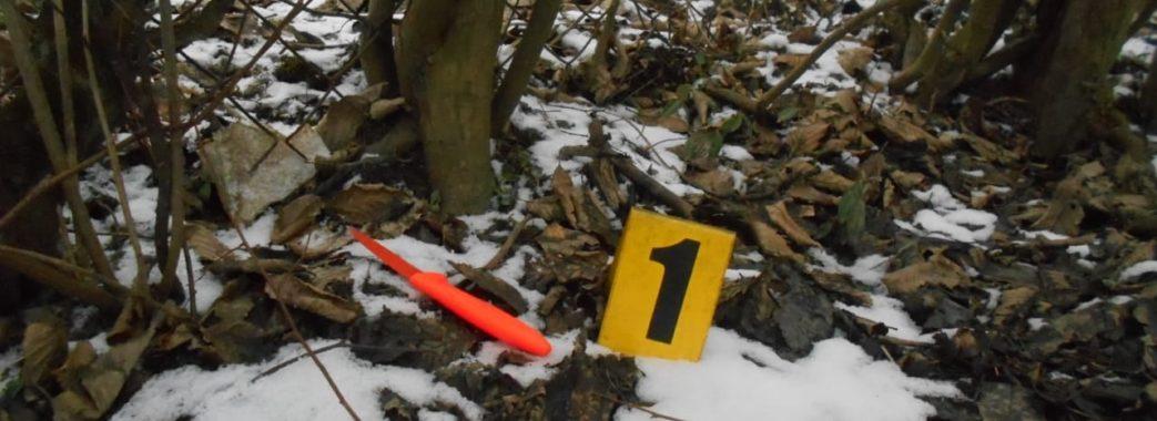 На Стрийщині через собак 31-річний чоловік вдарив ножем сусідку-пенсіонерку
