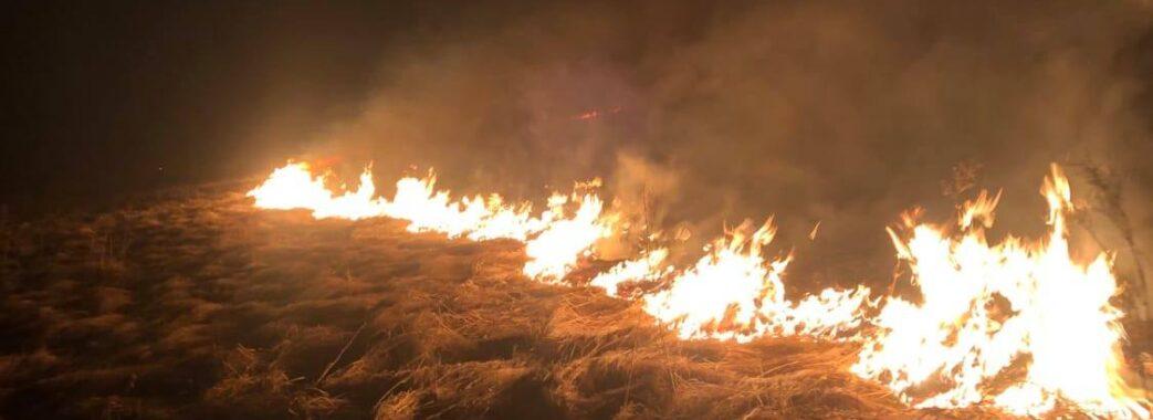 Продовжують палити сухостій: на Самбірщині вздовж автомобільної дороги виникла вогняна завіса (Відео)
