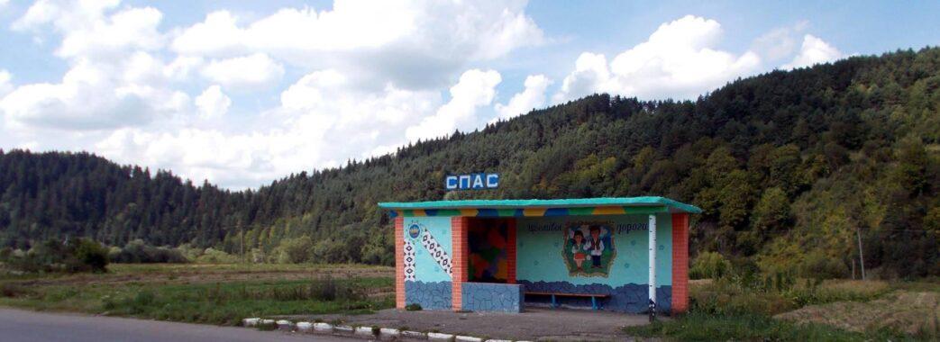 Село на Старосамбірщині вирішило заборонити будь-які рубки лісу