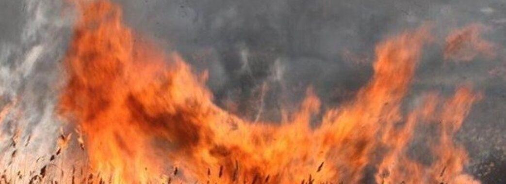 «Поплатився за свій вчинок»: 52-річний мешканець села піді Львовом обгорів під час спалювання сухої трави