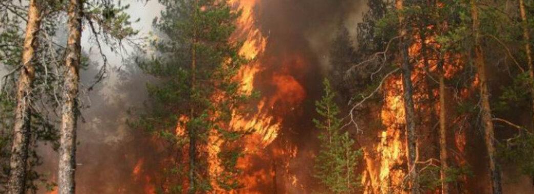 Мешканців Львівщини застерігають про високу пожежну небезпеку