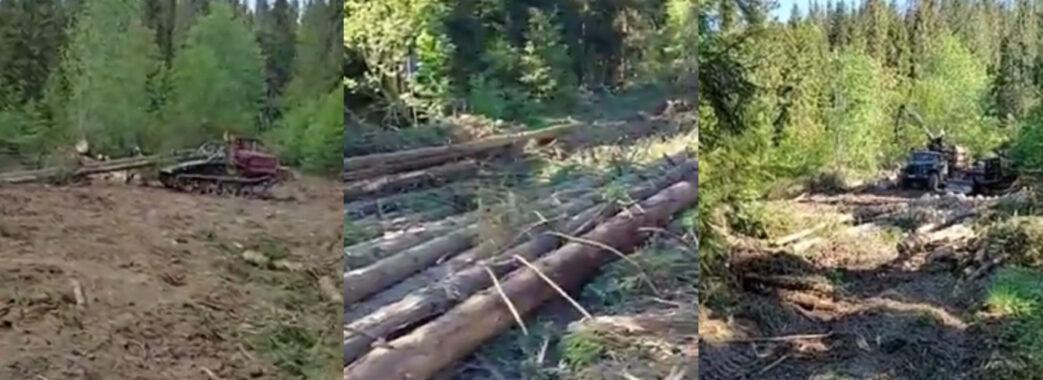 На Львівщині директор лісгоспу написав заяву у прокуратуру на ветерана АТО (ВІДЕО)