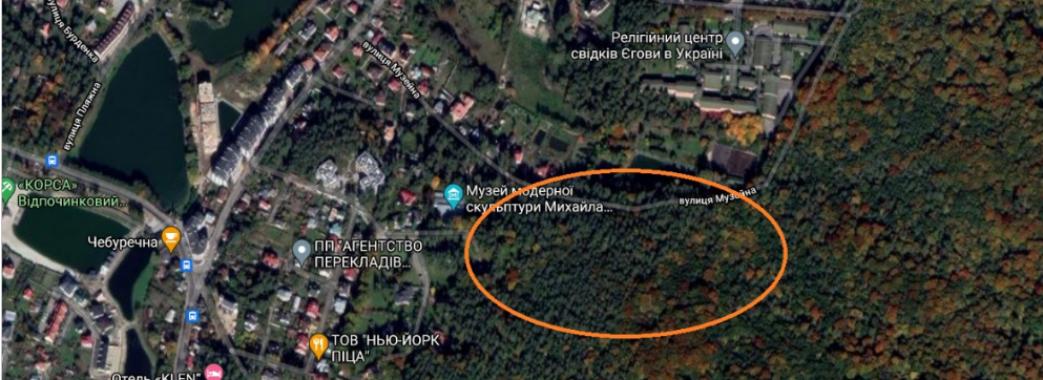 Незаконно приватизованими ділянками Брюховицького лісу заволоділа родина підсанкційного львівського митника